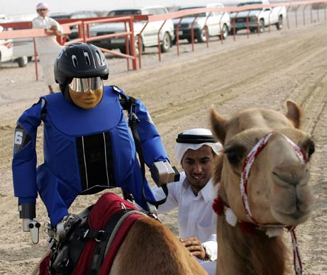A robot camel jockey preps for race (from National Geographic).