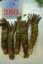 Raw wasabi: image via Wikipedia