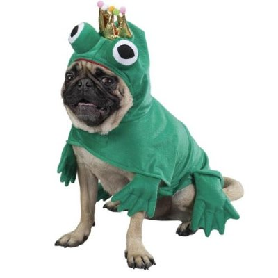 Prince or frog... prince or frog... Are those the only two choices I have?
