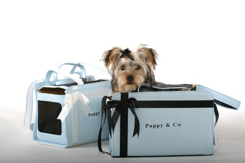 Putting On The Dog With The 10 Hautiest Designer Pet Carriers