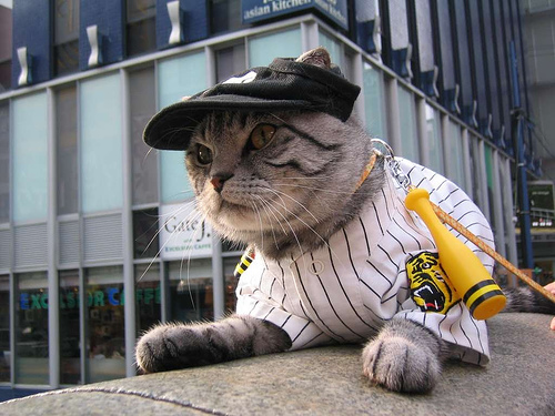 Hanshin Tigers fans come in all shapes, sizes... and species