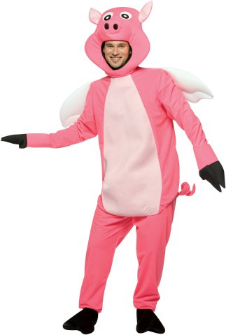 When Pigs Fly Halloween Costume