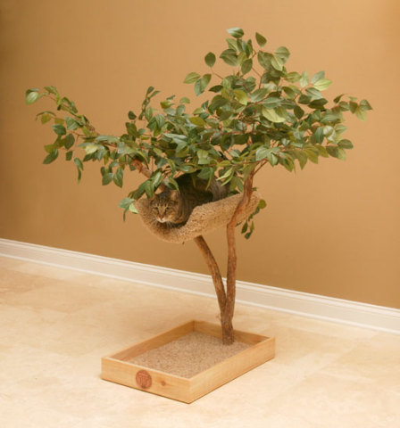 Sprout Pet Tree House For Cats: ©Pet Tree House, LLC