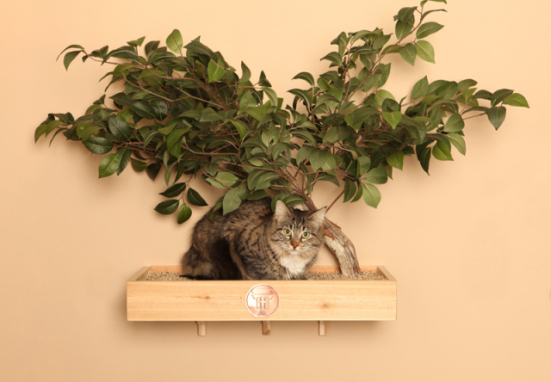 Cat Flat Tree House: ©Pet Tree House, LLC