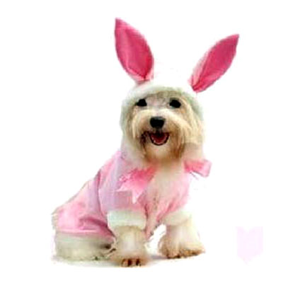 Fancy Pink Bunny Dog Costume