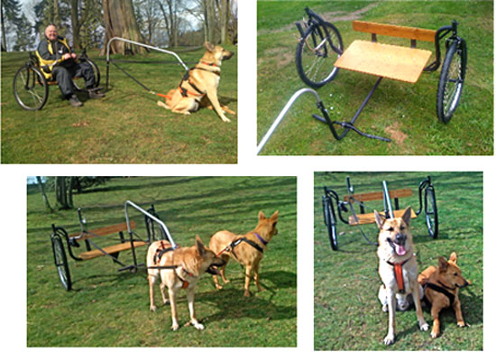 Human Pony Cart http://inventorspot.com/articles/travel_by_dog_carting_scootering_are_hot_18295