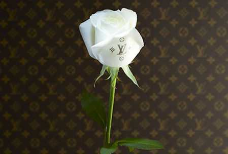 A rose by any other name... just won't do it on White Day