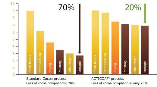 Acticoa chocolate process reserves important flavanols: ©Acticoa