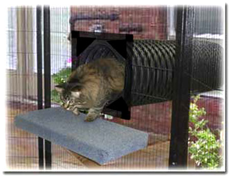 SunCATcher Enclosure tunnel leads directly from window into catio.:  ©SunCATcher Enclosures - Outdoor Cat Enclosures: How To Go From Patio To Catio