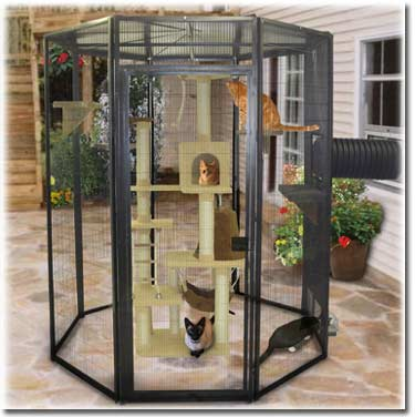 SunCATcher Enclosure 6' diameter catio: ©SunCATcher Enclosures