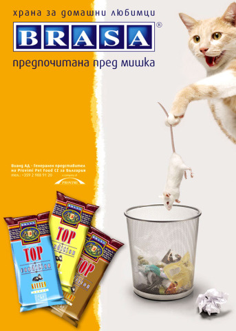 Can You Give Pedigree Dog Treats To Cats