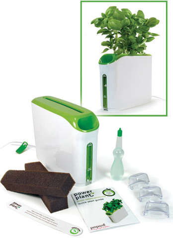 Growing Herbs Indoors In Provera 39 S Mini Power Plant