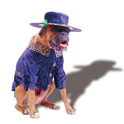 Best Pimp Pet Costume