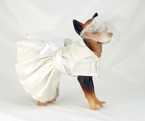 the well dressed dog at a wedding 10 awesome dog bridal gowns