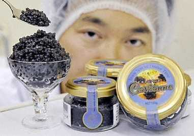 Cavianne - Artificial Caviar that Might Save the Sturgeon