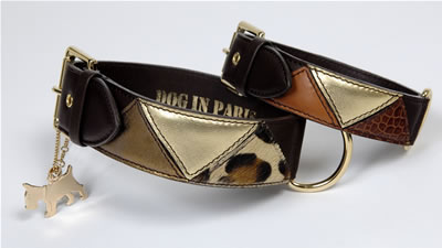 Collar Roma by Dog In Paris