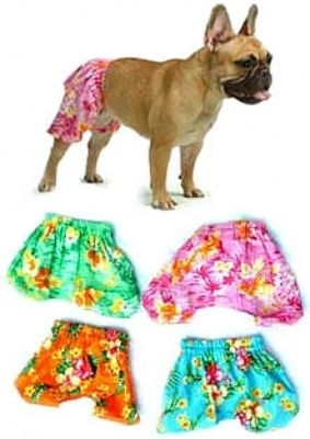 Spot S Illustrated 2008 Dog Swimsuit Issue