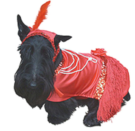 Best Retro Pet Costume