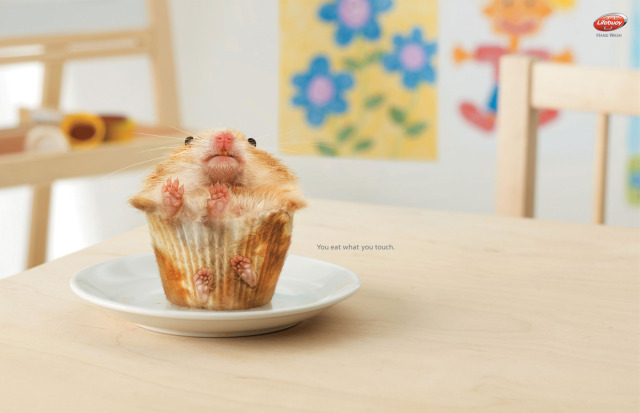 I don't like my muffins to bite back...