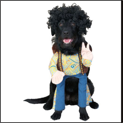Weirdest Pet Costume