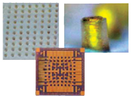 Electro Needle Biomedical Sensor Array