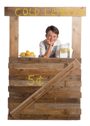 How to Start a Lemonade Concession Stand