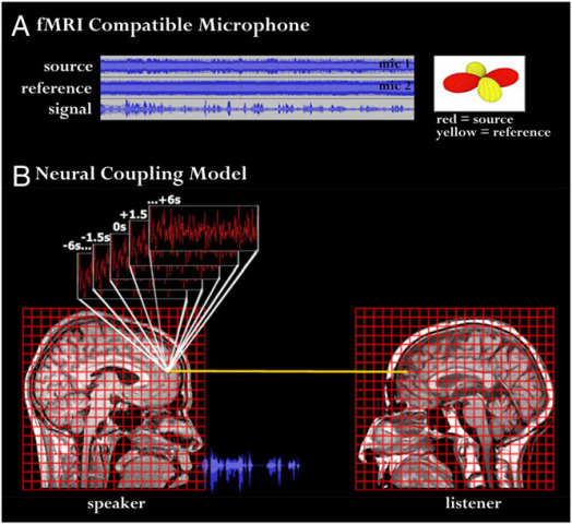"Neural Coupling Model by Greg J. Stephens, Lauren J. Silbert, and Uri Hassonc: image from ""Speaker–listener neural coupling underlies successful communication"" published in PNAS.org"