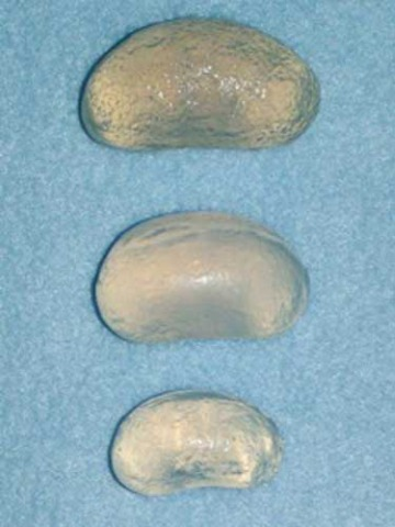 Three versions of Neuticals, artificial pet testicles.