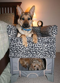 Co-Sleeper Pet Bunk Bed & Crate with Plush Liner accessory