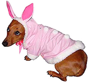 Easter Bunny With Pom-Poms Dog Costume