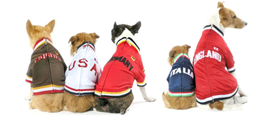 "World Soccer Cup Dog Track Jackets For 'World Pups"": image via petsugar.com"