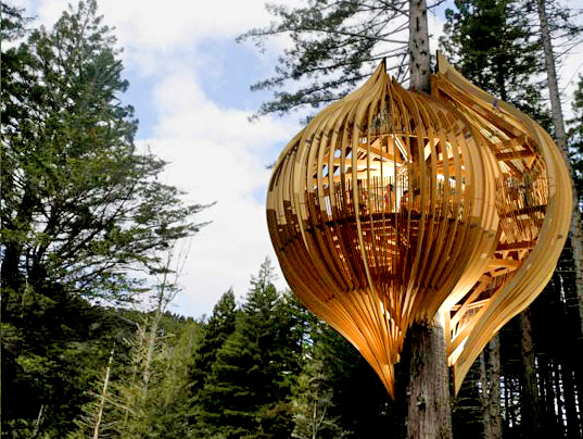 redwoods yellow treehouse restaurant The new yellow treehouse restaurant by new zealand based pacific  ltd is a  stunning architectural feat perched high above a redwood first.